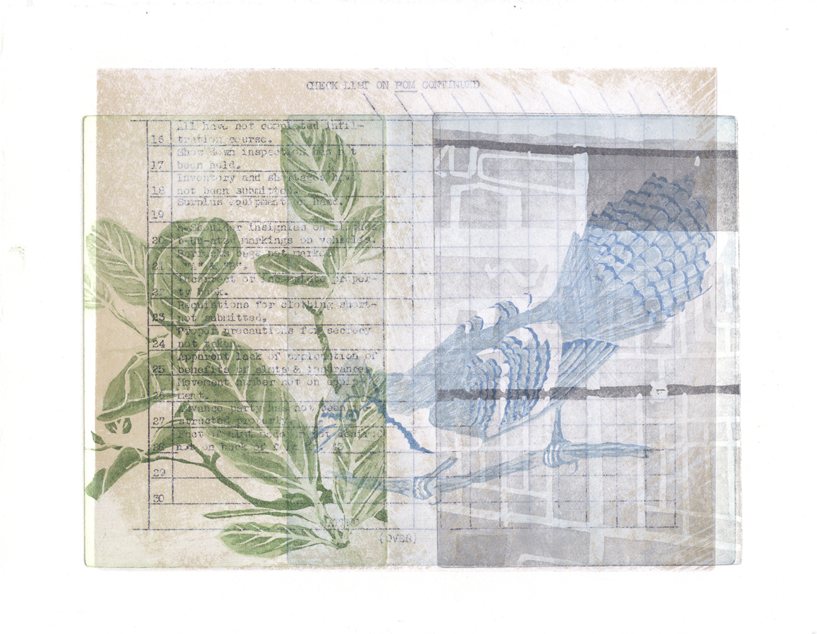 Florida Bluejay, Urban Treasure Collection, deckle edged paper, mixed media, aquatinta, collage, 2016, 500 €