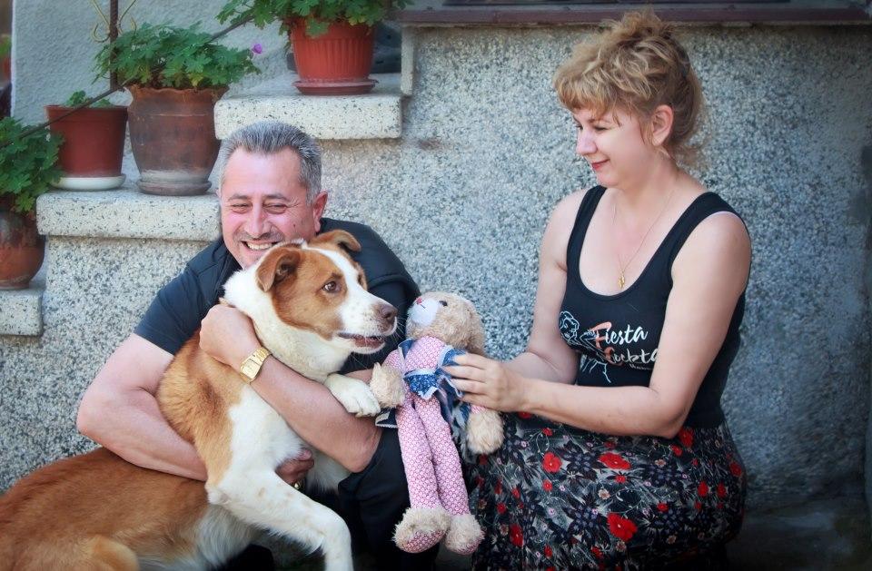 Tierfreunde Hunde Bomberjacke Digitalprint Familie
