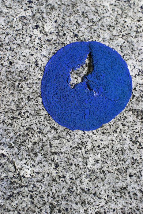 Jessica Backhaus Fotografie blau